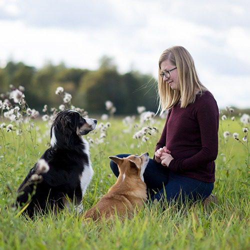 Tanya Matthews kesäisellä niityllä koiriensa kanssa.